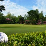 Summer-Golf-woodland